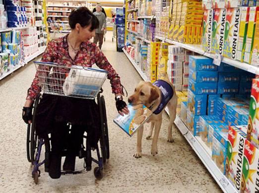 b2ap3_thumbnail_Service-Dog-Helping-to-Shop4.jpg